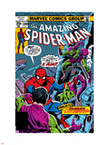 Spider-Man Family No.6 Cover: Spider-Man and Green Goblin Wall Decal by Ross Andru