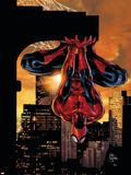 Omslag fra The Amazing Spider-Man Family No.2, på engelsk Plastikskilte af Mike Deodato
