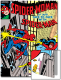 Spider-Woman No.20 Cover: Spider Woman and Spider-Man Fighting Posters by Frank Springer