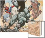 Spider-Man and Rhino Fighting - Battle Scene Wood Print
