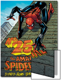 Amazing Spider-Girl No.25 Cover: Spider-Girl Prints by Pat Olliffe