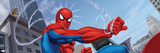 Spider-Man and Kraven the Hunter Fighting in the City Wall Decal