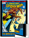 The Amazing Spider-Man No.110 Cover: Spider-Man and Gibbon Prints by John Romita Sr.