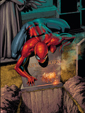 The Amazing Spider-Man No.581 Cover: Spider-Man Plastic Sign by Barry Kitson