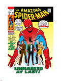 Amazing Spider-Man No.87 Cover: Spider-Man, Mary Jane, Gwen, Harry Osborn, and Peter Parker Posing Plastic Sign