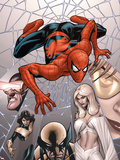 Marvel Knights Spider-Man No.6 Cover: Spider-Man Plastic Sign by Terry Dodson