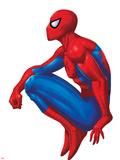 Spider Sense Spider-Man: Valentine, Spider-Man Posing Plastic Sign