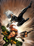 X-Factor No.217 Cover: Black Cat, Siryn, and M Flying Plastic Sign by David Yardin