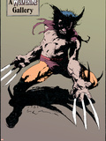 Wolverine No.10: Wolverine Plastic Sign by Kent Williams