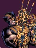 Wolverine: The Best There Is No.8 Cover: Wolverine Plastic Sign by Bryan Hitch