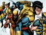 X-Men Evolutions No.1: Wolverine Plastic Sign by Patrick Zircher