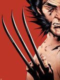 Wolverine No.16 Cover: Wolverine Plastic Sign by Jae Lee