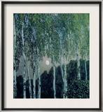 Birch Trees Framed Giclee Print by Aleksandr Jakovlevic Golovin