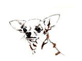 Big Ears the Chihuahua, 2012 Giclee Print by Jo Chambers