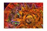 Brother Sun Giclee Print by Xavier Cortada
