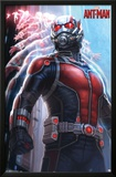 Ant-Man - Lang Prints