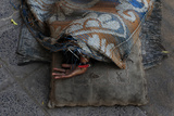 A Woman Sleeps under a Rug on a Sidewalk Along a Street in Kolkata Photographic Print by Shannon Stapleton