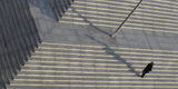Woman Walks across Stairs in Berlin Photographic Print by Tobias Schwarz