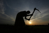 A Farmer Working in a Paddy Field, Silhouetted Against Setting Sun, Outskirts of Agartala Photographic Print by Jayanta Dey
