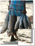 A Fisherman Carries Fish at the Beach in Trincomalee Posters by Stringer Sri Lanka