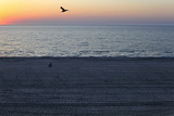 People Stroll on the Beach at the Dawn in the Black Sea Resort of Mamaia Photographic Print by Radu Sigheti