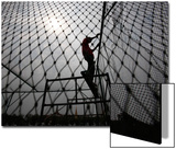 A Worker Fixes the Net onto a Cage Prints by Sukree Sukplang