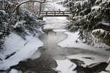 A Woman Crosses a Snow Covered Bridge over the Partly Frozen Kuesnachter Tobel River Photographic Print by Christian Hartmann