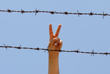 A Syrian Flashes V-Sign at a Refugee Camp in the Turkish Border Town of Altinozu in Hatay Province Photographic Print by Umit Bektas