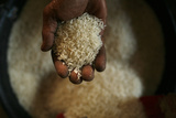 A Worker Shows His Rice at a Rice Mill in the Karawang Regency in West Java Photographic Print by Beawiharta Beawiharta