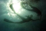 Free-Diving Swimmers Practice Apnea Reprodukcja zdjęcia autor Jorge Silva