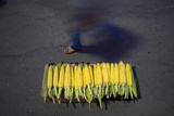 Woman Walks Past Corn as She Arrives at a Holy Shrine in Northern Tehran Photographic Print by Morteza Nikoubazl