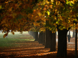 Man Walks in Park on Warm Day in Sofia Photographic Print by Stoyan Nenov