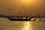 Birds Follow a Boat as People Feed Them During Sunset, on the Yangon River in Yangon Photographic Print by Reuters Staff