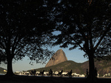 People Ride a Special Bicycle for Five Along the Guanabara Bar in Rio De Janeiro Photographic Print by Pilar Olivares