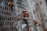 A Man Puts His Hand on a Fence During Food Distribution in Port-Au-Prince Photographic Print by Carlos Barria