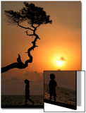 Girl and Boy Walk Near Tree at Sunset in Black Sea Town of Kobuleti Posters by David Mdzinarishvilir