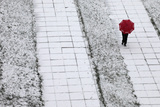 Pedestrian Walks under an Umbrella During Snowfall in Krasnoyarsk Photographic Print by Ilya Naymushin