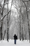 A Man Walks in a Park During Heavy Snowfall in Bucharest Photographic Print by Bogdan Cristel