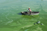 A Worker Rows a Boat in Chaohu Lake, Filled with Algae, in Hefei Papier Photo par Stringer China