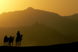 A Bedouin Rides a Camel in a Desert Near Tourist Resorts of Sharm El Sheikh Photographic Print by Goran Tomasevic