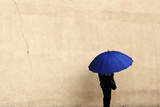 A Woman Holds an Umbrella During a Rainy Day in Queens Borough of New York Photographic Print by Shannon Stapleton