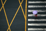A Pedestrian Holding an Umbrella Walks across a Main Intersection on a Rainy Day in Chengdu Photographic Print by David Gray