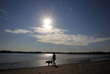 A Woman Walks Her Dog on Carson Beach on an Unusually Warm Fall Day in Boston Photographic Print by Brian Snyder