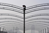A Worker Welds a Steel Frame to Provide Roofing for a Market in Xiangfan Photographic Print by Stringer Shanghai
