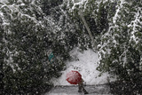 A Man Walks Holding a Red Umbrella in Center Sarajevo as Heavy Snow Fall in the Bosnian Capital Photographic Print by Dado Ruvic