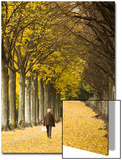 A Woman Walks During an Autumn Afternoon in De Valency Public Park in Lausann Prints by Denis Balibouse