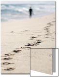 Person Walks Along Scarborough Beach in Perth Print by TIM WIMBORNE