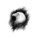 Eagle. Realistic Graphic Drawing. Prints by  MargaritaSh