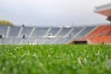 Grass at Stadium Photographic Print by  dreamnikon