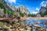El Capitan Photographic Print by  garytog